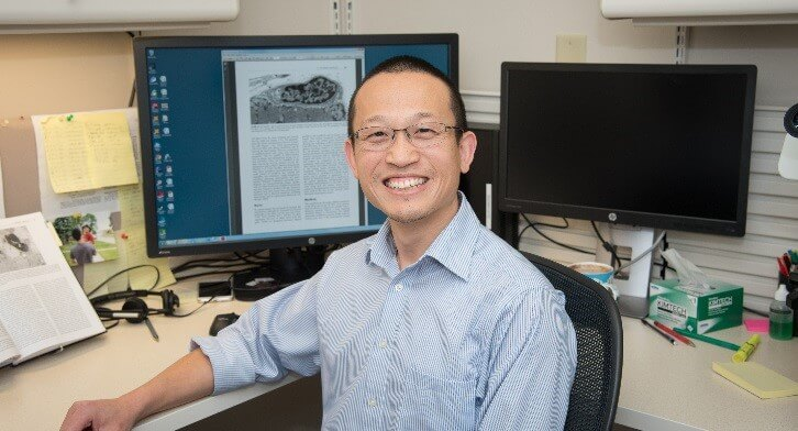 Qi Zhang – Research Grant – 2018 Featured Image