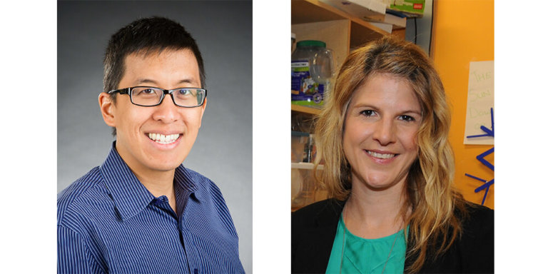 Derek Tsang and Fiona Schulte – Feature Research Grant – 2019 Featured Image